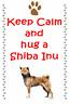 Shiba Inu - New - Dog fridge magnets New Gift - Free UK p/p
