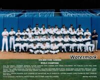 MLB 1978 New York Yankees World Champions Team Picture Color 8 X 10 Photo Pic