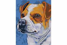 PAINTING BY NUMBERS JACK RUSSELL TERRIER T16130073