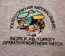 INCIRLIK AIR BASE task force Turkey tee XL Operation Northern Watch T shirt USAF