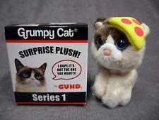Gund * Grumpy Cat Blind Box - Pizza * Series 1 Kitten Kitty Mini Plush