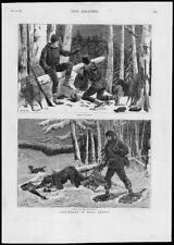 1879-antica stampa Canada Nuova Scozia Alberi Foresta Snowshoes FUCILE (178)