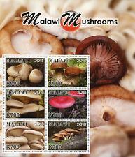 Malawi 2018 MNH Mushrooms 6v M/S Fungi Nature Stamps