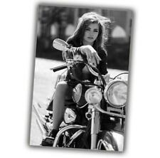 Woman on harley davidson motorcycle Pinup Sexy Girl Photo Size