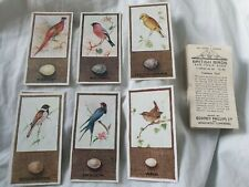 British Birds and Their Eggs (1936) Godfrey Phillips - Complete Your Set
