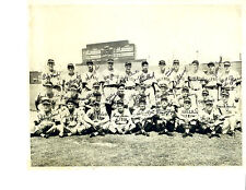 1949 Hollywood Stars Team Photo Baseball California Usa Pcl