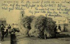 spain, SEVILLA (?), Un Vendedor de Baja, Straw Seller, Overloaded Donkey (1910s)