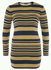Dorothy Perkins Striped Plus Size Dresses for Women