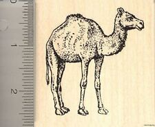 Large Camel rubber stamp Wood Mounted J7105