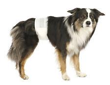 Trixie couches pour chiens mâles 12pcs l-xl 60-80cm TX23643