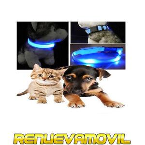 Collar Con Luz Led Para Perros Gatos Pequeños Pasear Perro Noche Mascota Azul