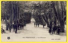cpa 66 - PERPIGNAN (Pyrénées Orientales) Quartier LES PLATANES Promenade animée