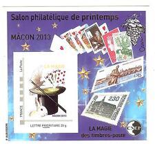 BLOC CNEP N° 63 SALON DE PRINTEMPS MACON 2013