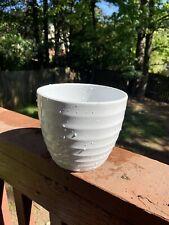 Indoor/Outdoor Planter Pots