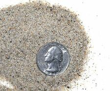 14 Ounces Lake Michigan Beach Sand from just north of Sleeping Bear Dunes