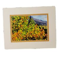 David Olson Natures Images Fine Art Photography Tree Leaves Lake Tahoe Nature