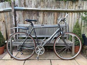 Ridgeback velocity bike