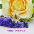 Ant Acrylic Specimen Ant Nest Decoration Unique Souvenir Gift Accessories New