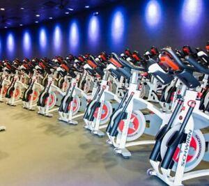 Schwinn Exercise Bikes for sale | In Stock | eBay