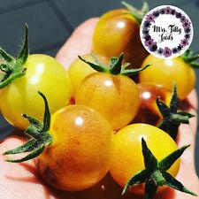 ‼️NEU ANTHO WHITE Weisse Cocktailtomate Tomatensamen Saatgut 10 Samen TOP SORTE!