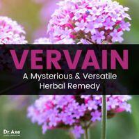 Blue Vervain Capsules 100% Organic All Natural Dr Sebi