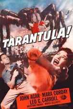 Tarantula Poster 08 A4 10x8 Photo Print