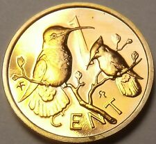 Rare Cameo Proof British Virgin Islands 1979 Cent~Hummingbird~5,304 Minted~Fr/Sh