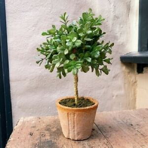 Artificial Small Potted Box Boxwood Buxus Tree Topiary, Terracotta Pot Realistic
