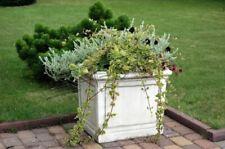 Blumenkübel Pflanz Kübel Dekoration Figur Blumentöpfe Garten Vasen Gefäss 560