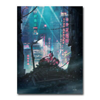 Akira - Red Fighting Hot Japan Anime 2019 Movie Silk Canvas Poster Print 24x32''