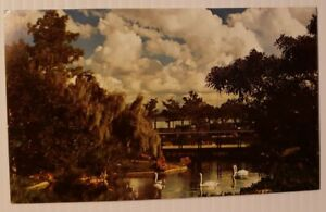 Vintage Postcard Bird Ponds Sea World San Diego California