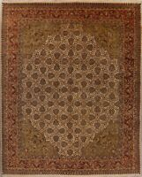 8x10 All-Over Floral Agra Oriental Area Rug Wool Hand-Knotted Dining Room Carpet
