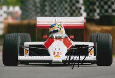 Bruno Senna Hand Signed 12x8 Photo Formula 1 F1 1.