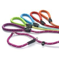 Figure 8 Slip Lead for Dogs | Reflective | Bright & Modern | Training Lead