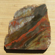 Brecciated Jasper Stone Slab Vivid Red Brown Gray Rock Natural Lapidary Cabbing