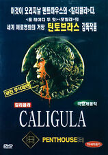 CALIGULA (1979) - Malcolm McDowell DVD *NEW [DISC ONLY]