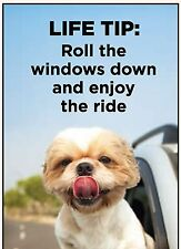 Life Tip: Roll The Windows Down And Enjoy The Ride funny fridge magnet (ep)