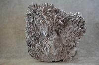 Gorgeous Dog Tooth Calcite Decorator Specimen Santa Eulalia Chihuahua Mexico