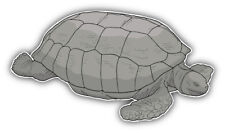 Giant Turtle Car Bumper Sticker Decal  -  ''SIZES''