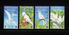 103838/ Ascension Island 1999 - Mi 786/9 - Feenseeschwalbe / WWF - **
