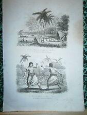 gravure 1839  Océanie Dumont d'Urville Kawa sur la plage de Namouka boxe à Tonga