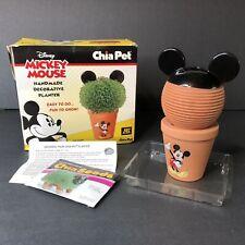 Mickey Mouse Disney Chia Pet Decorative Planter New Open Box (D)