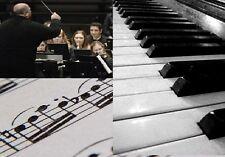 Professional Development: Music / Musician Training