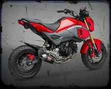 Honda Grom Aka Msx 125 1 A4 Photo Print Motorbike Vintage Aged