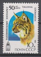 RUSSIA SU 1989 **MNH SC#5794 Tallinn Zoo, Lynx