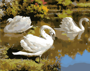 Paint By Numbers Kit Canvas 50*40cm 8161 White Swan Lake AU Shipping