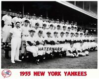 MLB 1955 New York Yankees Team Picture Black & White 8 X 10 Photo Picture