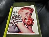 Jay North Autographed 8 x 10 Photo Dennis the Menace