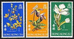 Hong Kong 342-344, MNH. Orchids: Buttercup, Lady's-slipper, Susan, 1977