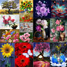5D DIY Diamond Painting Flower Floral Embroidery Cross Craft Stitch Home Decor